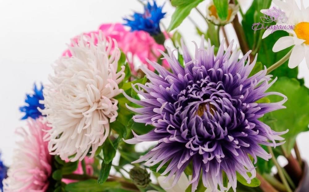 Цветов купить, букет астр из глины отзывы